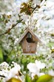 Poca pajarera en primavera con el flor Foto de archivo