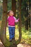 Poca ragazza di bellezza sull'albero Immagine Stock