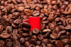 Poca taza entre los granos de café Fotografía de archivo