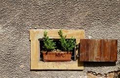 Poca ventana beige, una flor verde y el doblar marrón shutter imagenes de archivo