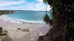 Pocas palmeras sobre laguna tropical con la playa blanca Isla Nusa Lembongan, Bali, Indonesia del paraíso Agua azul y almacen de video