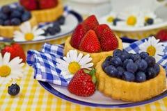 Pocas tortas de la fruta Foto de archivo