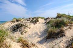 Poche dune del punto del nero Fotografie Stock