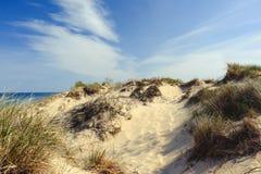 Poche dune del punto del nero Fotografia Stock Libera da Diritti