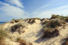 Poche dune del punto del nero Immagini Stock