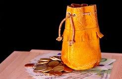 Poche en cuir, euro pièces de monnaie et cent euro billets de banque Photographie stock