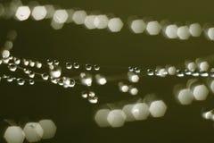 Poche gocce della pioggia Immagini Stock
