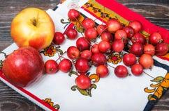 Poche mele di paradiso e le grandi mele usuali Immagine Stock