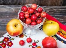 Poche mele di paradiso e le grandi mele usuali Immagini Stock Libere da Diritti