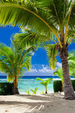 Poche palme che trascurano spiaggia tropicale sul cuoco Islands Immagini Stock