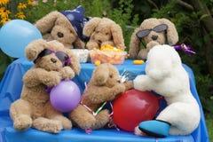 Pochi animali di partito Fotografie Stock