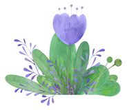 Pociągany ręcznie akwarela kwiatu przygotowania bukiet stylizowani kwiaty royalty ilustracja