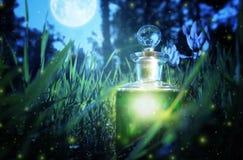 Poción de hadas mágica del polvo en botella en el bosque fotografía de archivo libre de regalías