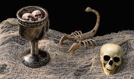 Poción del ` s de la bruja rodeada por el esqueleto y el cráneo del escorpión foto de archivo libre de regalías
