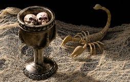 Poción del ` s de la bruja rodeada por el esqueleto y el cráneo del escorpión fotos de archivo