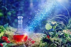 Poción mágica en botella en bosque foto de archivo