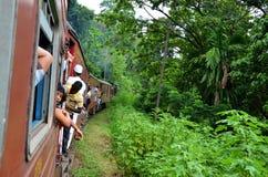 Pociąg podróżuje przez dżungli w Srí Lanka, Zdjęcia Stock