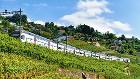 Pociąg przy Lavaux winnicy Tarasowym wycieczkuje śladem Szwajcaria Zdjęcia Stock