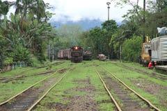 Pociąg przy linią kolejową Zdjęcie Royalty Free