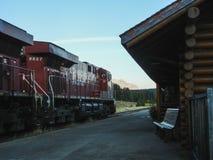 Pociąg towarowy kanadyjscy pokojowi kolej stojaki przy Banff statio zdjęcie royalty free