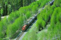 Pociąg towarowy rusza się przez Kanadyjskich Skalistych gór zdjęcia stock