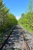 Pociąg tropi bieg przez dalekiego obszaru zalesionego zdjęcia stock