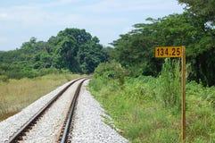Pociąg Tropi Prowadzić horyzont Zdjęcie Royalty Free