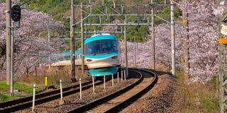 Pociąg w czereśniowym okwitnięciu fotografia stock