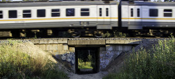 Pociąg w lesie Obrazy Royalty Free