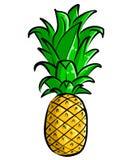 pociągany ręcznie Ananasowy Ilustracyjny Clipart obrazy royalty free