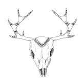 Pociągany ręcznie jelenia czaszka z rodzimym ornamentem Fotografia Royalty Free