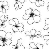 Pociągany ręcznie kwiatów bezszwowy wzór Fotografia Royalty Free