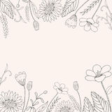 Pociągany ręcznie kwiat rama Obrazy Royalty Free