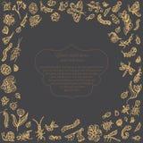 Pociągany ręcznie rocznika abstrakcjonistyczny szablon z wpisowymi i złocistymi insektami, motyle, ścigi na blackboard pocztówka Fotografia Royalty Free