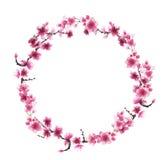 Pociągany ręcznie wianek Sakura royalty ilustracja