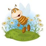 Pocieszna pszczoła na kwiat haliźnie Zdjęcia Stock