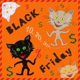 Pocieszni koty ogłasza Black Friday Obrazy Royalty Free
