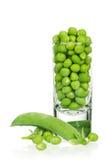 pociski tła zielonych grochu kapsuły białych Obrazy Stock