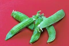 pociski tła zielonych grochu kapsuły białych Fotografia Stock