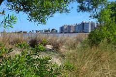 Pocitos de Playa Foto de archivo libre de regalías