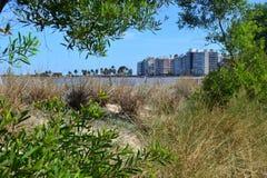 Pocitos di Playa Fotografia Stock Libera da Diritti