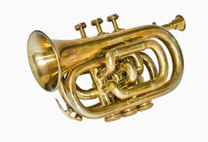 Pocket cornet. Is a smaller and more compact version of a cornet Royalty Free Stock Photography