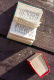Pocket dictionaries. Language learning in my spare time outdoors Stock Photography
