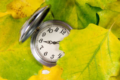 Pocket watch and autumn leaves Stock Image