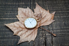 Pocket watch the autumn leaves. Royalty Free Stock Image