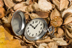 Pocket watch on dried flowers and leaves. Antique pocket watch against the background of dried flowers and leaves Royalty Free Stock Images
