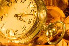 Pocket watch and dry leaves Royalty Free Stock Photo
