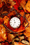 Pocket watch on leaves. Antique pocket watch on Fall leaves Royalty Free Stock Images