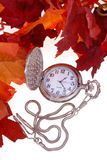 Pocket watch and red leaves Royalty Free Stock Photo