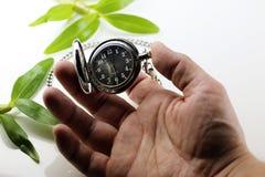 Pocket watch retro concept Stock Image